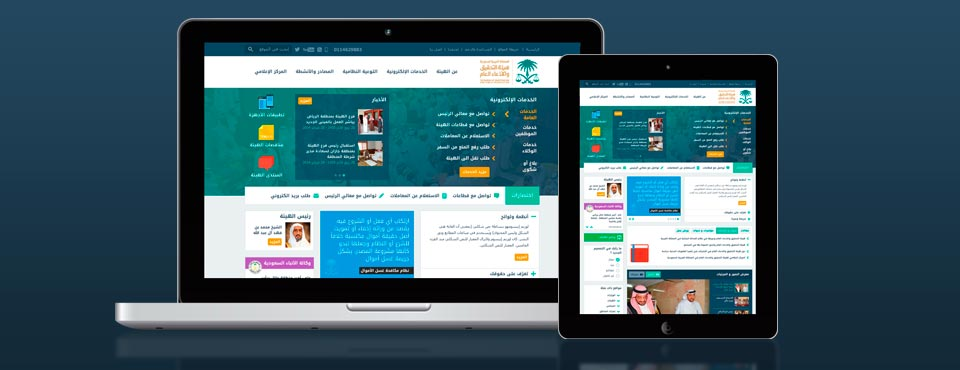Re-design for BIP Portal, KSA.